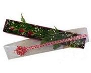 Tekirdağ çiçek siparişi sitesi  3 adet gül.kutu yaldizlidir.