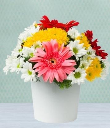 Seramik Vazoda Gelbera ve Papatya  Tekirdağ çiçek satışı