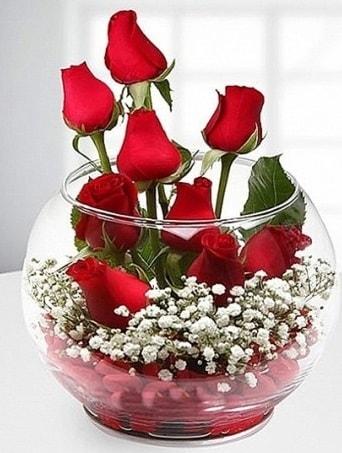 Kırmızı Mutluluk fanusta 9 kırmızı gül  Tekirdağ çiçekçiler