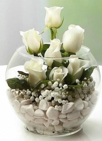 Beyaz Mutluluk 9 beyaz gül fanusta  Tekirdağ çiçekçiler