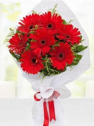 Kırmızı Gelbera Buketi  Tekirdağ online çiçek gönderme sipariş