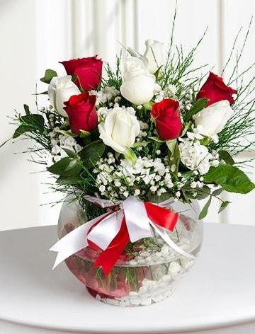 Aşk Küresi  5 beyaz 5 kırmızı gül fanusta  Tekirdağ internetten çiçek siparişi