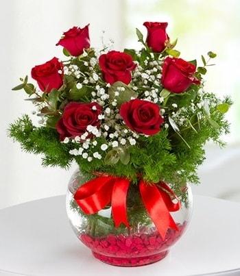 fanus Vazoda 7 Gül  Tekirdağ hediye çiçek yolla