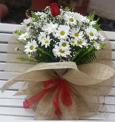 Papatya 1 adet kırmızı gül buketi  Tekirdağ çiçek siparişi vermek