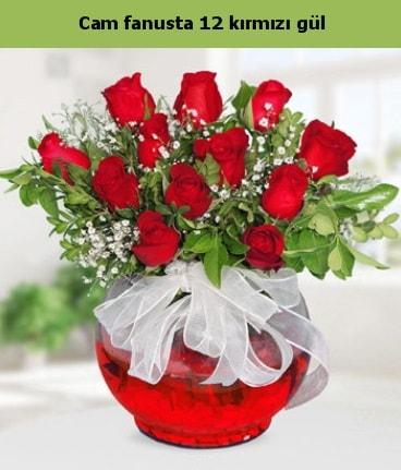 Cam içerisinde 12 adet kırmızı gül  Tekirdağ internetten çiçek siparişi