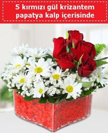 mika kalp içerisinde 5 kırmızı gül papatya  Tekirdağ çiçek satışı