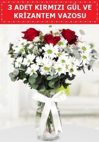 3 kırmızı gül ve camda krizantem çiçekleri  Tekirdağ çiçek satışı