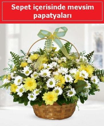 Sepet içerisinde mevsim papatyaları  Tekirdağ çiçekçi mağazası