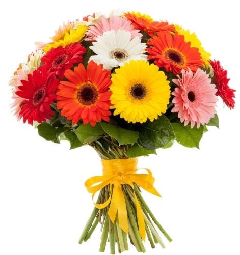 Gerbera demeti buketi  Tekirdağ ucuz çiçek gönder