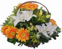 Tekirdağ İnternetten çiçek siparişi  sepet modeli Gerbera kazablanka sepet