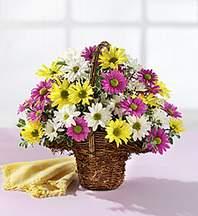 Tekirdağ çiçek siparişi vermek  Mevsim çiçekleri sepeti